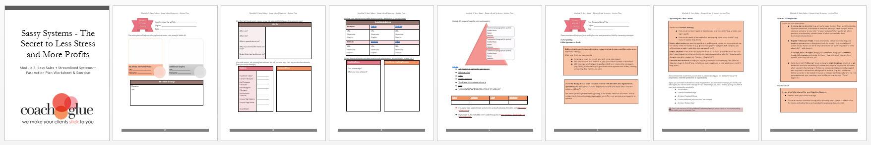 Module 3 Sexy Sales + Streamline Systems Action Plan Screenshot