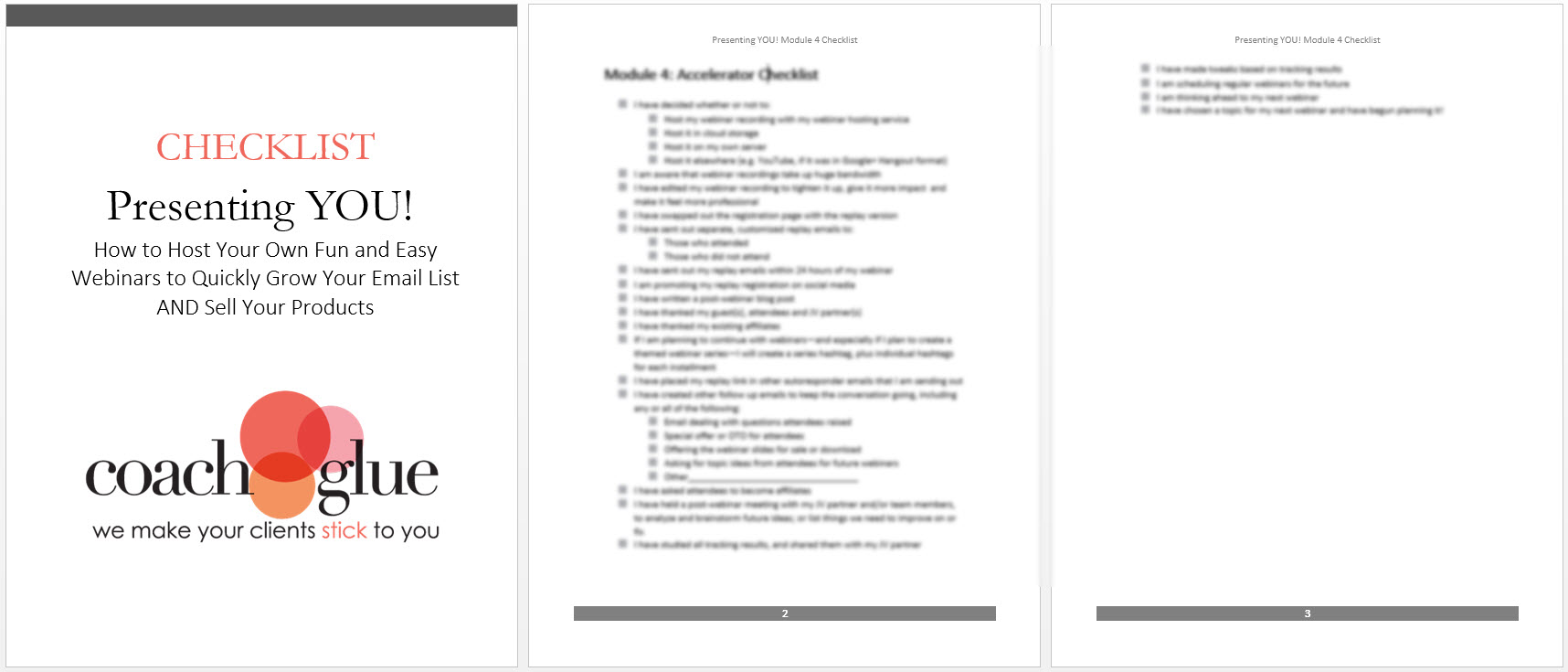 Module 4 checklist screenshot