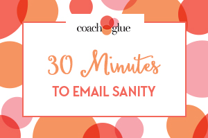 30 Minutes to Email Sanity