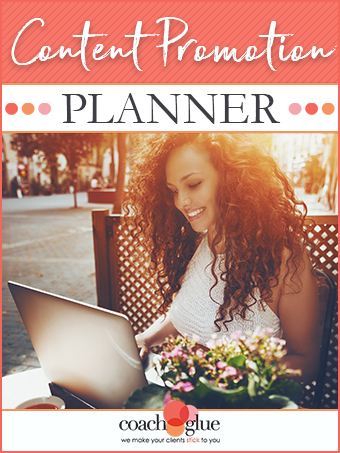 Content Promotion Planner